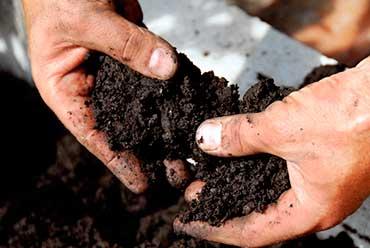 Menue paille - Compost
